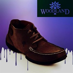 Picture of Woodland UpTo 40% Off