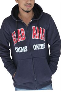 Picture of Men Hoodies ESH401