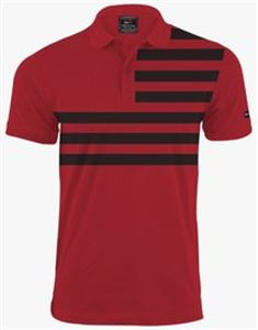 Picture of Men's Polo Shirt-AF-0108