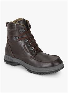 Picture of Woodland 1543114 Brown