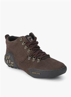 Picture of  Woodland 1869115 Brown