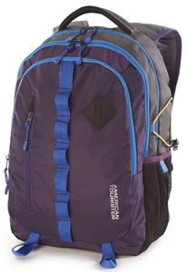 Picture of American Tourister Buzz 2015 Backpack - Purple (Buzz-01-Prl)