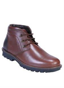 Picture of Woodland 2271116 Brown