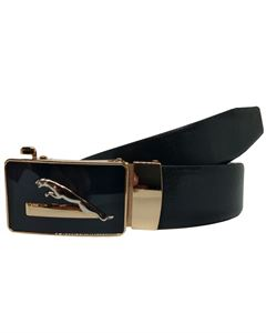 Picture of  Waist Leather Belt BP-1813