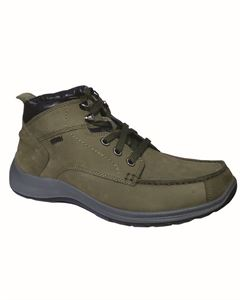 Picture of Woodland 2315116 Olive