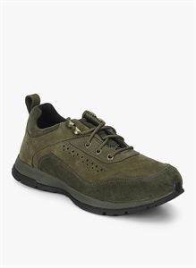 Picture of Woodland 2062116 Olive