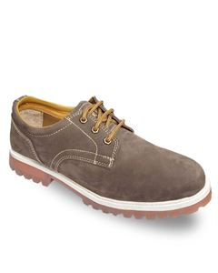 Picture of Woodland 2332116 Brown