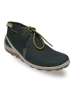 Picture of Woodland 2456117 Olive