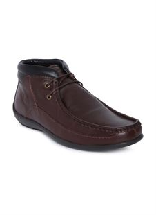 Picture of  Woodland 2671117 Brown