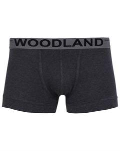 Picture of Woodland Innerwear Bottom IWTR 001 (ANTHRA/GREY)