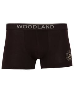 Picture of Woodland Innerwear Bottom IWTF 001 (CHOCOLATE BROWN)