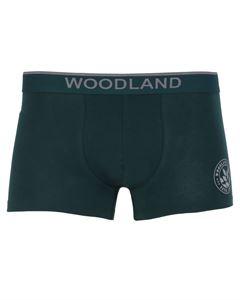 Picture of Woodland Innerwear Bottom IWTF 001 (BGREEN)