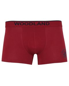 Picture of Woodland Innerwear Bottom IWTF 001 (MAROON)