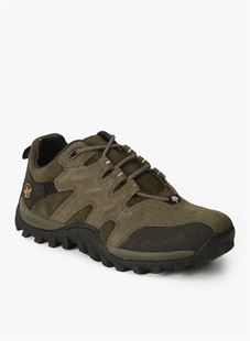 Picture of Woodland 232106 Olive