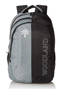 Picture of Woodland Backpack 123210 (GREY/BLACK)