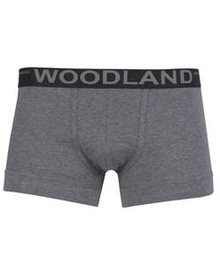 Picture of Woodland Innerwear Bottom IWTR 001 (SGREY)