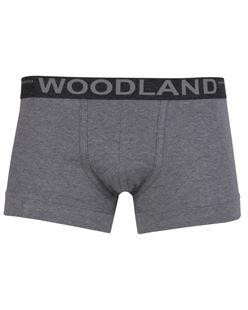Picture of Woodland Innerwear Bottom IWTR 001 (SGREY)