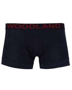 Picture of Woodland Innerwear Bottom IWTR 001 (NAVY)