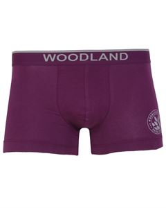 Picture of Woodland Innerwear Bottom IWTF 001 (PURPLE)