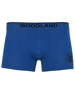 Picture of Woodland Innerwear Bottom IWTF 001 (ABLUE)