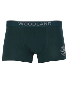 Picture of Woodland Innerwear Bottom IWTF 001 (BGREEN)