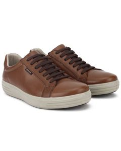 Picture of Woodland 2509117 Brown