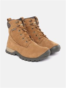 Picture of  Woodland 3454119 Brown